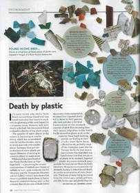 PLASTIC POLLUTION - jenniferlaverss jimdo page!   9 Environmental Science   Scoop.it