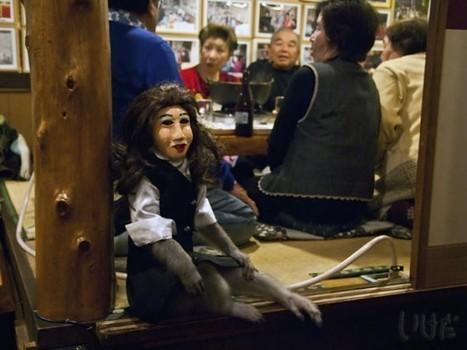 Japanese Restaurant Employs Masked Monkey Waiters | Strange days indeed... | Scoop.it