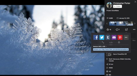 Flickr Unveils New Embed Feature, Brace Yourself for Photographer Outrage | celebs social culture | Scoop.it