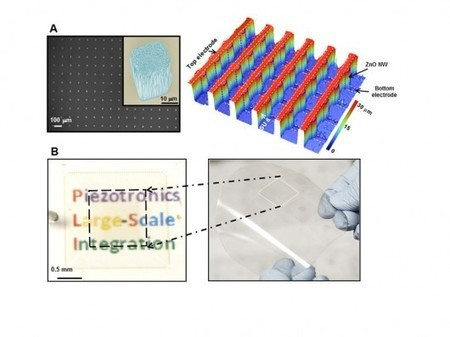 Piezoelectric skin provides human-like sense of touch | Longevity science | Scoop.it