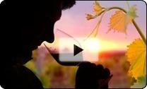 Domaine Robert et Bernard Plageoles | Nova Vina | Vignerons de Terres de Gaillac | Scoop.it