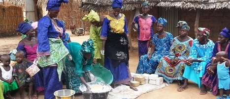 Helping communities in four West African countries improve their food security - Reliefweb | FANRPAN | Scoop.it