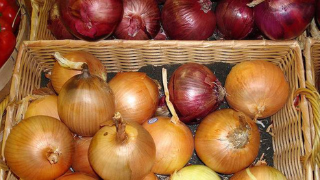 Know Which Onions to use For Which Preparations | Troy West's Radio Show Prep | Scoop.it