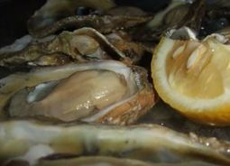Study tracks global warming threats to tropical shellfish | Farming, Forests, Water & Fishing (No Petroleum Added) | Scoop.it
