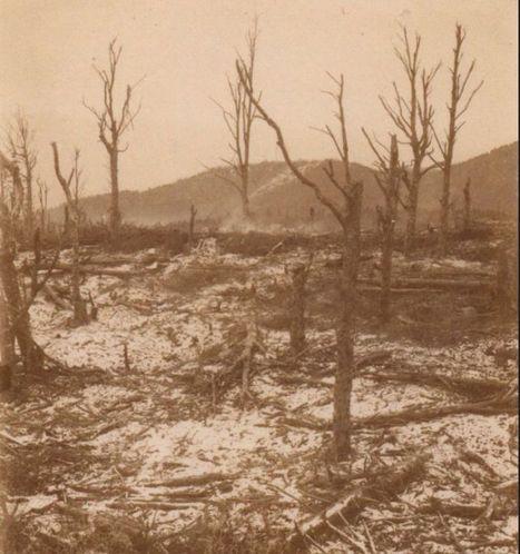 Le Hartmannswillerkopf  « Vieil-Armand » : Champ de bataille et lieu de mémoire - Vivre en temps de guerre 1914-1918 | Nos Racines | Scoop.it