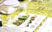 El debate que abre la primera plantación de marihuana medicinal en Chile | Education | Scoop.it
