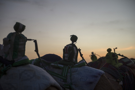 The DIY Robots That Ride Camels and Fight for Human Rights | Strange days indeed... | Scoop.it