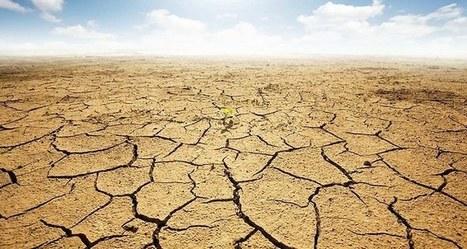 Climat: 2014, l'une des années les plus chaudes depuis 1880 | Faire Territoire | Scoop.it