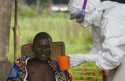 Ứng phó virus Ebola của Việt Nam ,Công ty tư vấn môi trường Ngọc Lân | nonameseoer | Scoop.it