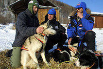 Sled Dogs | Working Dogs | Scoop.it