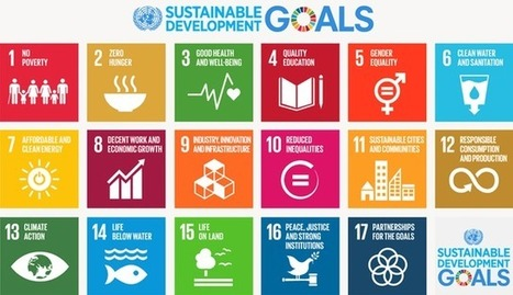 What is the Role of ICT4D in the Sustainable Development Goals? | ICT Works | Internet Development | Scoop.it