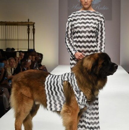Style Fashion Week - New York Roundup | Best of the Los Angeles Fashion | Scoop.it