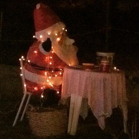 Les vacances de Noël s'annoncent étincellantes à Guillestre ! | Facebook | Guillestre Parc du Queyras | Scoop.it