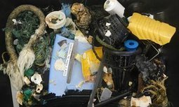 'Great Pacific garbage patch' far bigger than imagined, aerial survey shows | Eco issues | Scoop.it