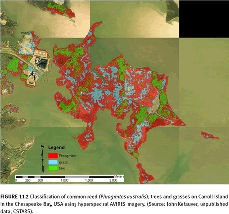 Remote sensing technologies for mapping invasive alien species | Remote Sensing - Vegetation Classification & Condition | Scoop.it