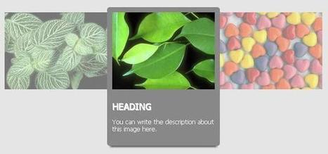 5 CSS Hover Effects you will love to use | Web Tutorial Plus | webdevelopment | Scoop.it