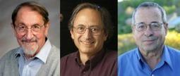 El Nobel de Química y los 'legos'   Educacion, ecologia y TIC   Scoop.it