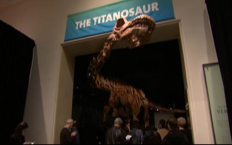 Titanosaur unveiled in New York City | enjoy yourself | Scoop.it