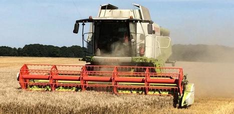 Crise céréalière : L'AGPB rappelle l'urgence à agir sur le plan bancaire | Grain du Coteau : News ( corn maize ethanol DDG soybean soymeal wheat livestock beef pigs canadian dollar) | Scoop.it