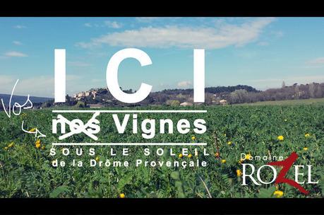 Participez à la plantation de vignes au Domaine Rozel - Magazine du vin - Mon Vigneron | Actualités du Vin | Scoop.it
