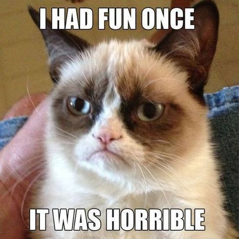 Grumpy Cat Dances The Harlem Shake | Funny and Viral Photos | Scoop.it