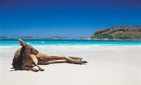 The Aussie coast becomes tourism champion   The Insight Files   Scoop.it