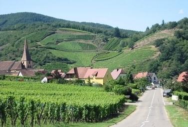 La route des vins d'Alsace soufflera ses 60 bougies en 2013 | Revue de Web par ClC | Scoop.it