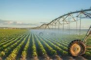 Concern Over California Crops Irrigated with Oil and Gas Wastewater | Coastal Restoration | Scoop.it
