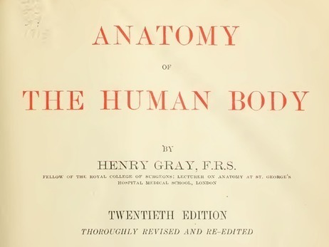 Gray's Anatomy may have been largely plagiarized, written by a scoundrel | Plagiarism | Scoop.it
