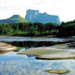 Venezuela entre los 10 primeros países con mayor biodiversidad del planeta | ¿Cómo sería el mundo si las naciones con mayor población las ubicamos en los países más grandes extensos? | Scoop.it