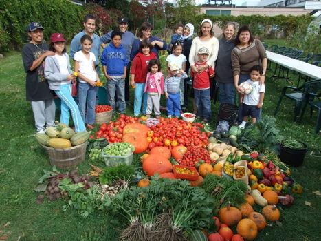 Les fêtes des récoltes battent leur plein à Montréal! - Nouvelles - Agriculture urbaine Montréal | Nourrir la ville | Scoop.it