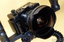 Photo sous-marine : SWAL13 de Dyron, une lentille très grand-angle - La plongée bio avec Anthony Leydet   photo sous-marine   Scoop.it