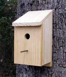 bird house plans   Free woodworking plan   Design Technology   Scoop.it