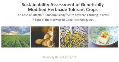 Agencia Noruega Medio Ambiente: no hay suficientes evidencias científicas de que los transgénicos sean inocuos | PIENSA en VERDE | Scoop.it