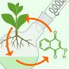 Biochemistry bioorganic chemistry