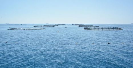 Planning Board revokes 10 fish farm development permits | Aquaculture Directory | Aquaculture Directory | Scoop.it