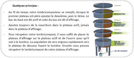Le lombricompostage | Rpo... | Scoop.it