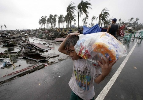 Typhoon survivors in Philippines plead for food, medicine as US Marines fly in help | Risques et Catastrophes naturelles dans le monde | Scoop.it