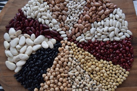 A Guide To The Beans You Need To Know (And Cook) | Vegetarian and Vegan | Scoop.it