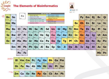 The Elements of Bioinformatics   GenoCon 2   Scoop.it