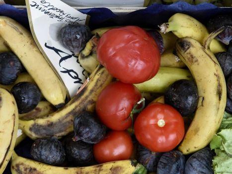 Gaspillage alimentaire : l'Etat donne un coup de pouce aux associations | Associations - ESS - Participation citoyenne | Scoop.it