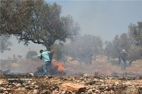 Teen struck by rubber bullet at West Bank rally   Maan News Agency   Occupied Palestine   Scoop.it