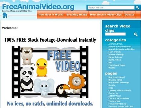 20 Plataformas para descargar vídeos gratis en HD | Herramientas útiles | Scoop.it