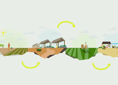 USAID Motion Graphic: Powering Agriculture | green infographics | Scoop.it