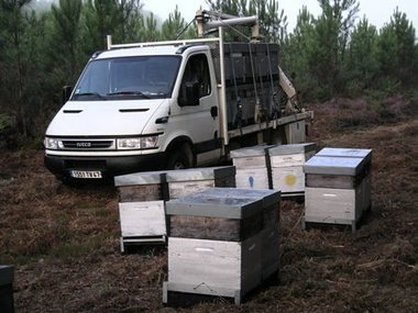 ITSAP - Institut de l'abeille - Apiculture et pollinisation | Apiculture | Scoop.it