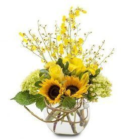 Fresh flowers and gifts - The Blossom Shoppe, Boynton Beach | jueadamsd links | Scoop.it