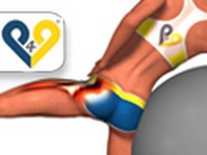 Exercices Fessiers: Abduction hanche avec ballon suisse - Un esprit ... | fitness et régime | Scoop.it