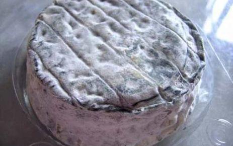 Alerte au fromage de chèvre | The Voice of Cheese | Scoop.it