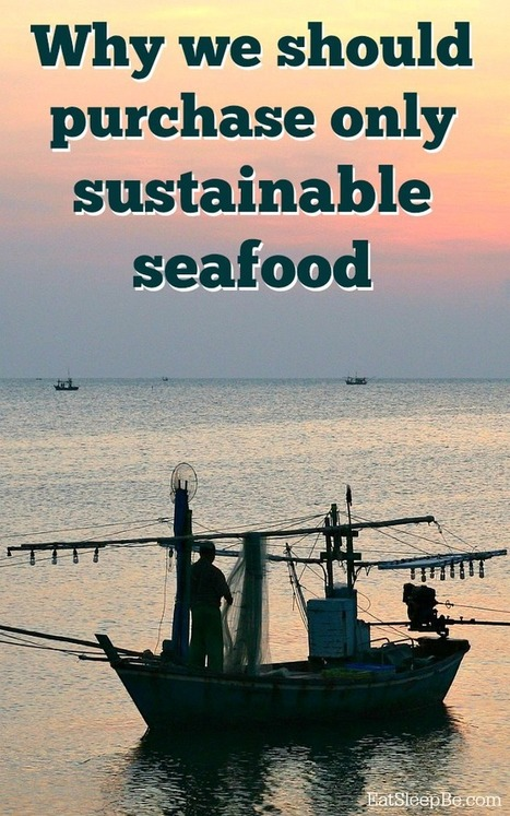 The Reason We Should Purchase Sustainable Seafood | Sustainable Agriculture | Scoop.it