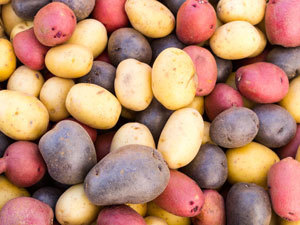 ROTHAMSTED/BBSRC MENTION: Low acrylamide potato on the horizon | Chemistry World | BIOSCIENCE NEWS | Scoop.it